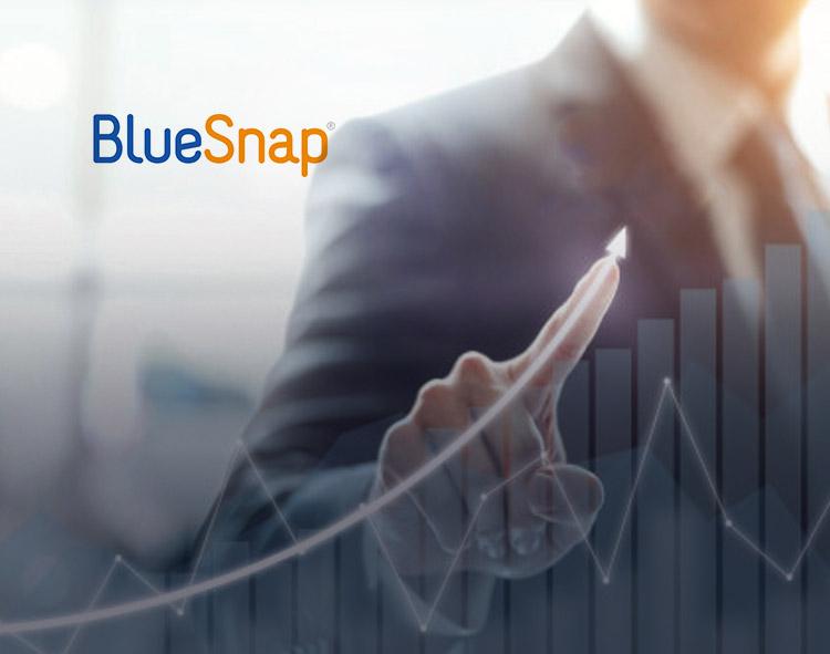 BlueSnap Names Gregg Capone SVP of Customer Success