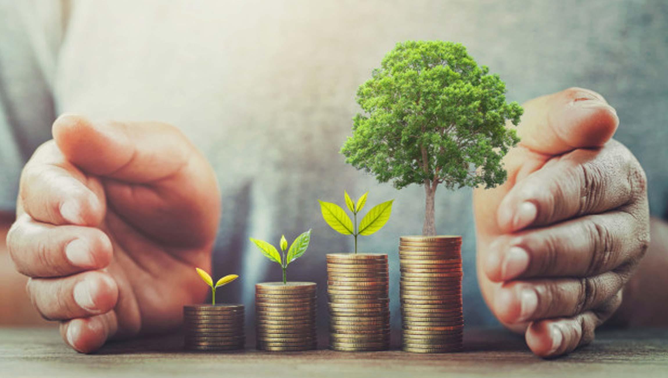 Hancock Whitney Bank Offers PayActiv EWA Program to Business Clients